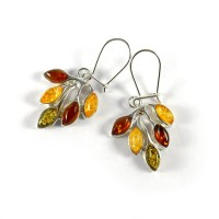 amber earrings #30